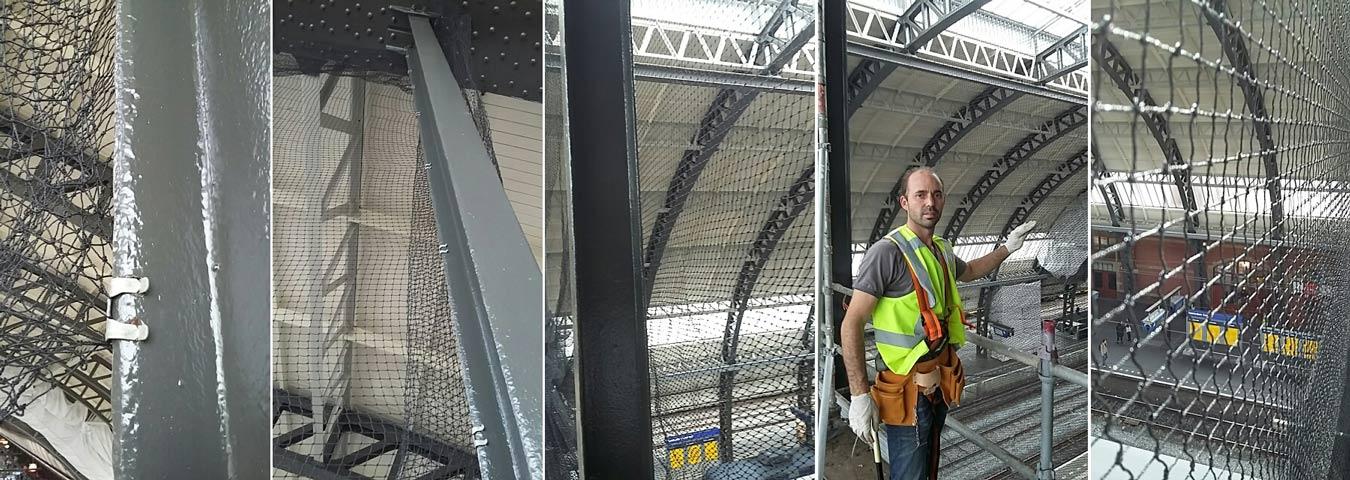 Bestrijding vogels treinstation Amsterdam netten